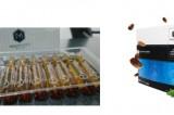 Alerta COEPRISS y recomienda no adquirir ni usar productos Mesofrance