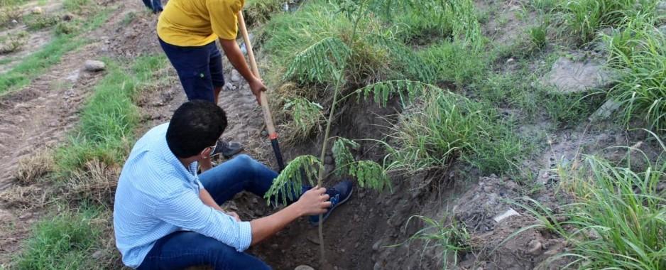 Apoya SEDESU la creación de corredor verde en el acceso a Yebavito en Navolato