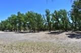 Acuerdan comuna de Badiraguato y Conagua continuar con dragado del Río sin talar árboles