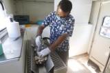Acudirá camión esterilizador de perros y gatos a la  colonia Independencia