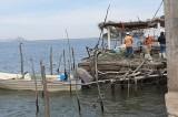 Reportan desaparecidos a cuatro pescadores de Dautillos, Navolato