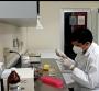 Casos de dengue en Sinaloa se incrementan en los meses de octubre y noviembre
